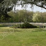 Ysselsteyn German War Cemetery