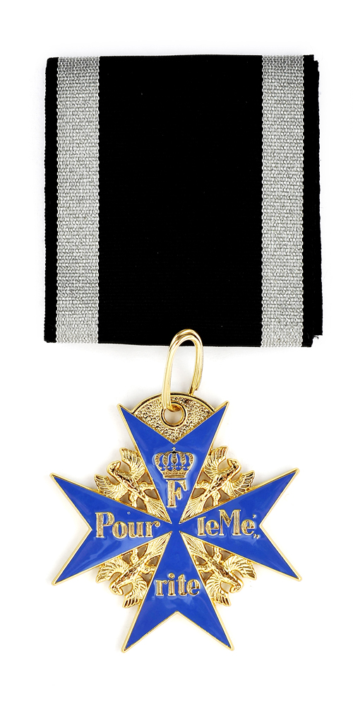 SUPERIOR Imperial Germany German WWI Blue Max or Pour Le Merite medal